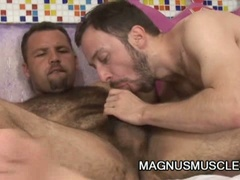 Hairy dudes suck and fuck each other