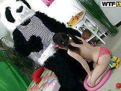 panda bear and a fragile lustful beauty