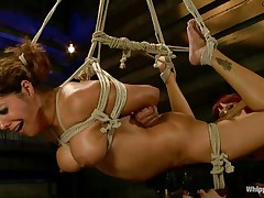 tied francesca le gets gratified by maitresse madeline
