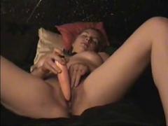 German golden-haired bitch