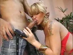 Ladyboy fishes out his dick and sucks it
